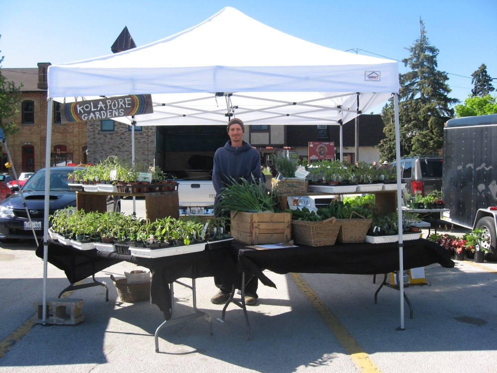 If you haven't yet - come say hi at the Collingwood Farmers' Market - Lately I've had seedlings, sorrel, baby garlic, fresh thyme, parsley, tarragon, chives, leeks and more - we even had pipers walk through today!  Plenty of other great vendors as well